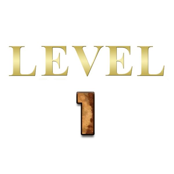 Solo Activated Freestyle Level 1
