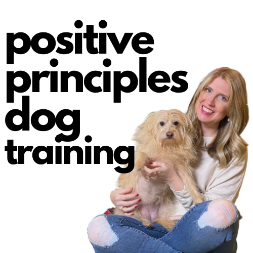 Positive Principles Dog Training